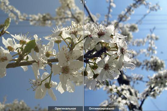 Ashampoo Photo Optimizer 6.0.19.136 Final