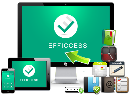 Efficient Efficcess 5.60 Build 553