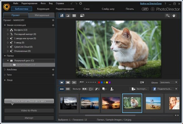 CyberLink PhotoDirector Ultra 8.0.2303.4 + Rus
