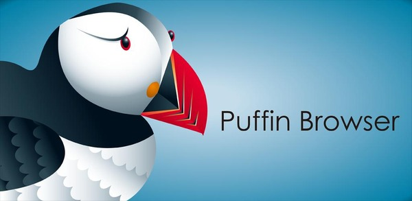 Puffin Browser Pro 7.8.1.40497