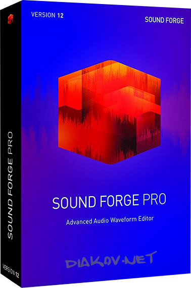 MAGIX Sound Forge Pro 13.0 Build 46